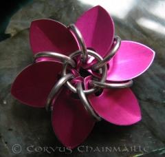 AA 6 petal flower