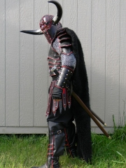 Completed Berserker Armor 5.19.11 014