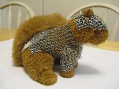 Squirrel Mail 2