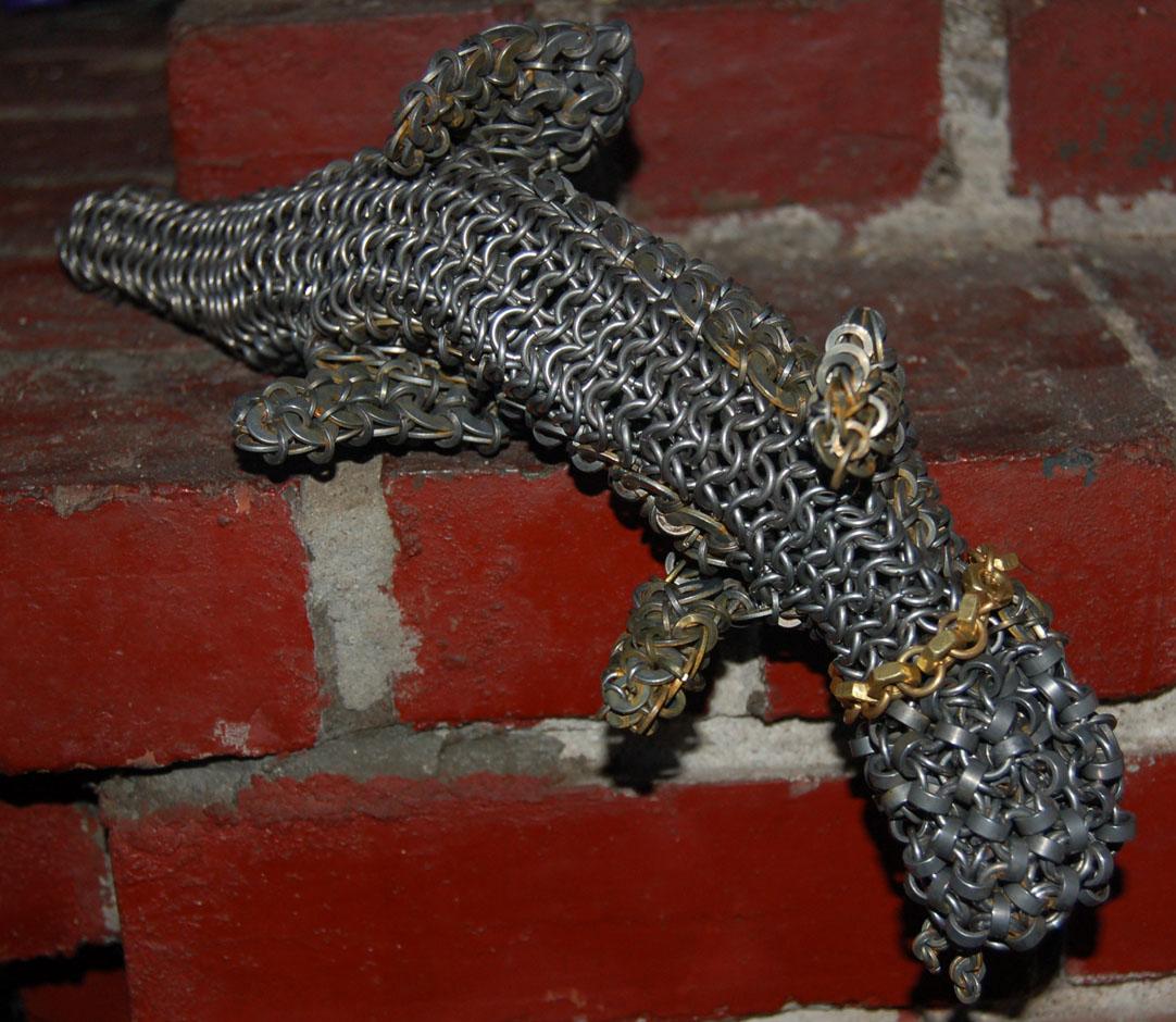Lizard in Repose
