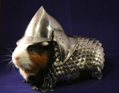 Pig Knight