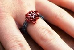 Kathy's ring 2