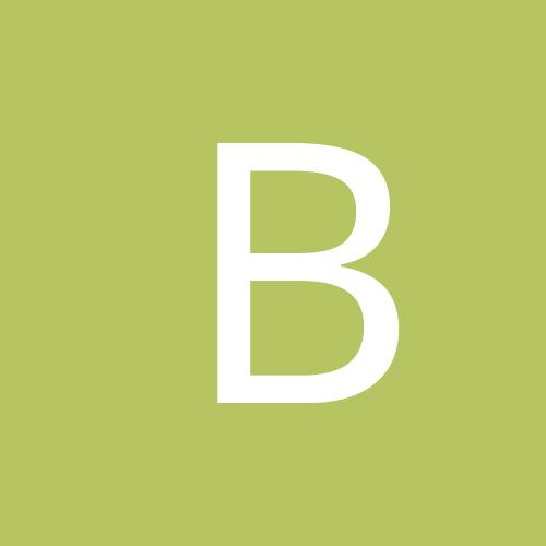 bdbrian